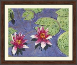 Raindrops on the waterlilies