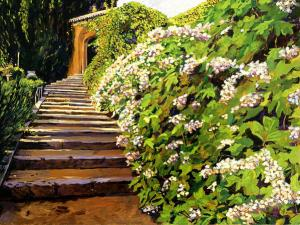 Garden Stairway Tuscany sells