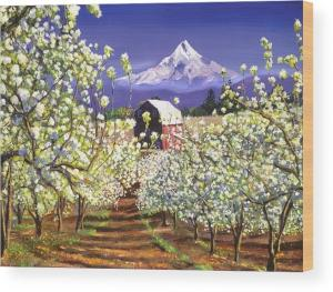 Apple Blossoms Mount Hood sells